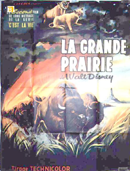 Movie in grande prairie